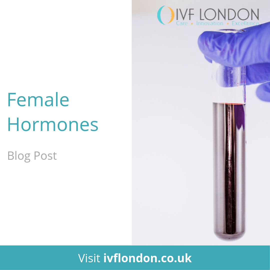 Female Hormones Blog Post